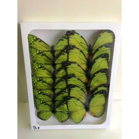 Пеперуди - зелени 13см