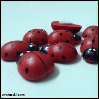 Калинки - големи от www.cvetarski.com